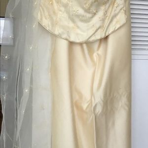 Long skirt with bodice and shawl.